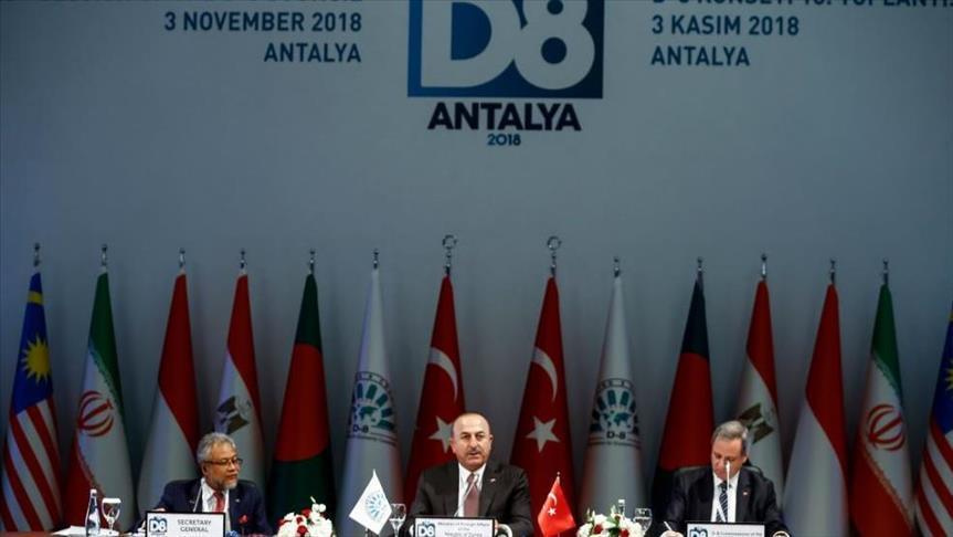 تركيا تدعو لاستخدام العملات المحلية بين دول مجموعة الثماني الإسلامية