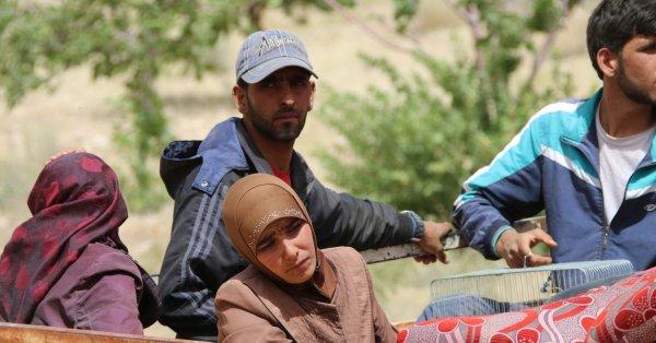 الأمم المتحدة: 80% من اللاجئين بمصر يعيشون أوضاعًا بائسة