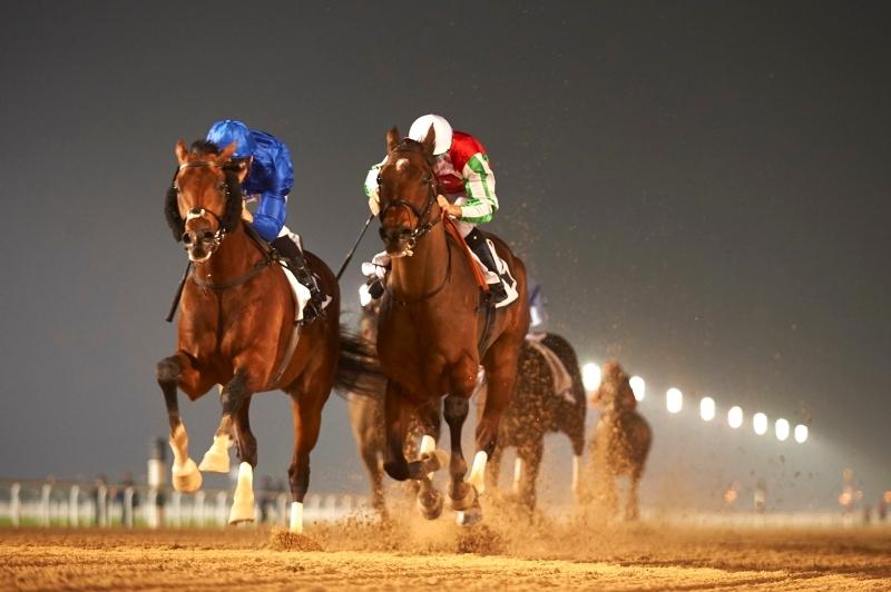 الإمارات تشارك بـ3 خيول في الشوط الرئيسي لكأس دبي العالمي