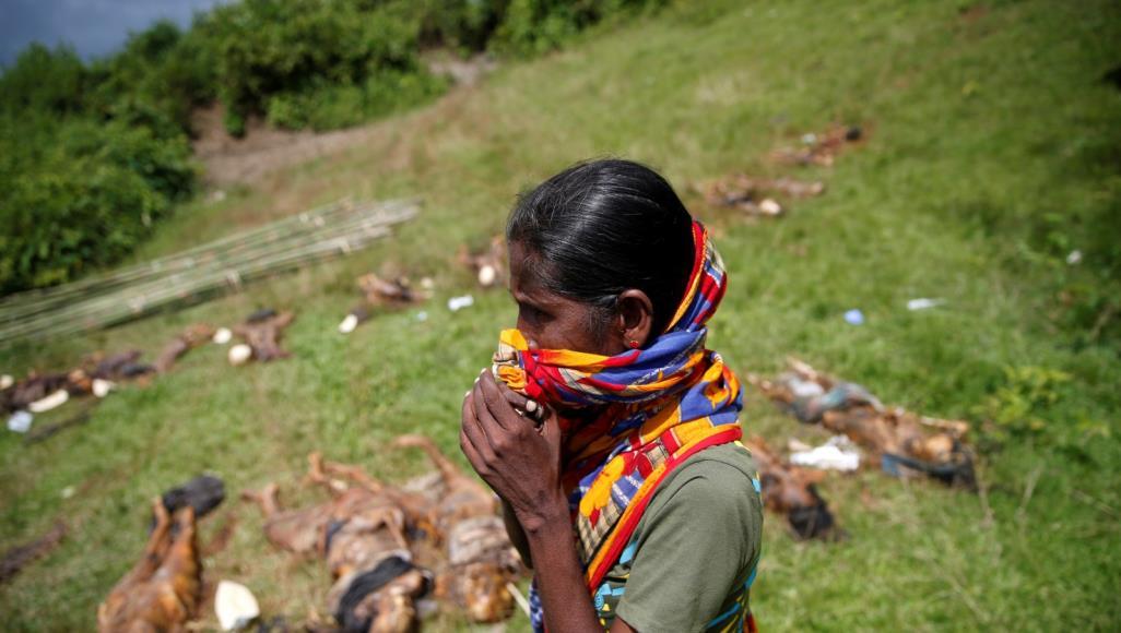 تقرير أميركي: جنود ميانمار اغتصبوا فتيات وتركوهن شبه موتى