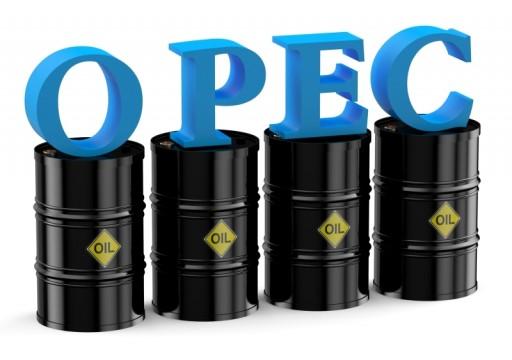 أوبك: السعودية تبقي على إنتاج النفط مستقراً في يونيو