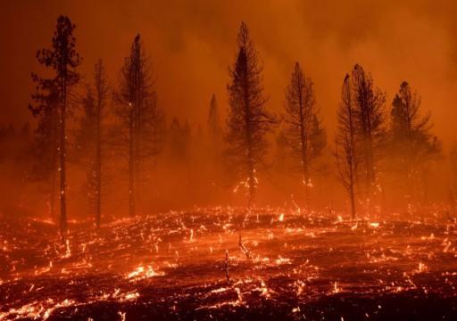 """تحذيرات من """"مسار مقلق"""" لكوكب الأرض بعد تسجيل الشهر الأكثر حراً"""
