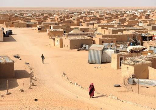 """الأمم المتحدة: وضع الصحراء الغربية """"تدهور بشكل كبير"""""""