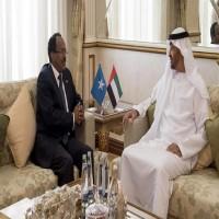 إذاعة فرنسية: الإمارات تتبع سياسة مضطربة في القرن الإفريقي
