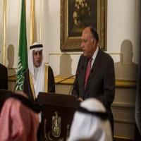 مشاورات مصرية سعودية حول إدلب السورية