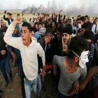 هيومن رايتس ووتش: قتل متظاهري غزة عمل مدروس وغير مشروع