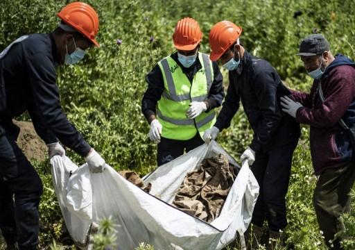 العثور على 200 جثة في مقبرة جماعية في الرقة السورية