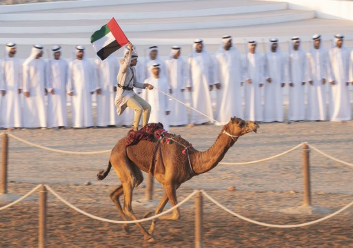 لماذا يجب على الإماراتيين خلق معارضة وطنية قوية لمواجهة الاستفراد؟!
