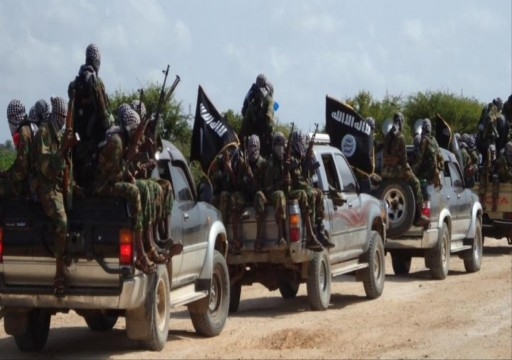 مقتل 13 من مقاتلي الدولة الإسلامية بالصومال في ضربة جوية أمريكية