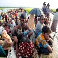 الأمم المتحدة: نصف مليون روهنغي يعانون التهميش والتمييز بأراكان