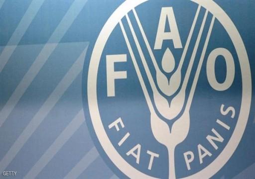 فاو: تراجع طفيف في أسعار الأغذية العالمية خلال يونيو