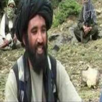 مزاعم صحفية أمريكية: الإمارات كانت ملاذا آمنا لزعيم طالبان السابق