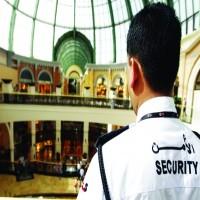 محمد بن راشد يُعدِّل قانون تنظيم الصناعة الأمنيّة في إمارة دبي