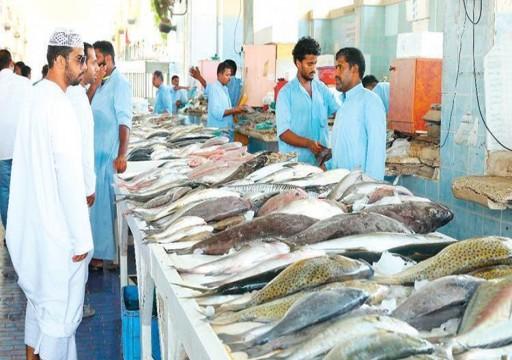 الأمطار المتواصلة ترفع أسعار الأسماك في الفجيرة