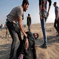 برلماني أوروبي يطالب بفرض عقوبات على إسرائيل بسبب جرائمها في غزة