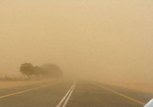 دراسة إماراتية: غبار الصحراء يحافظ على النظام البيئي في بحر العرب
