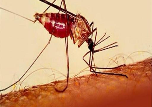 """جامعة """"نيويورك أبوظبي"""" تكشف نتائج دراسة بحثية حول آليات المناعة ضد الملاريا"""