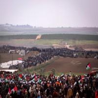 نفير فلسطيني نحو حدود غزة في جمعة الإعداد والنذير