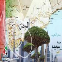 إندبندنت تصف  سيطرة الإمارات على جزيرة سوقطرى بـالاستعمار
