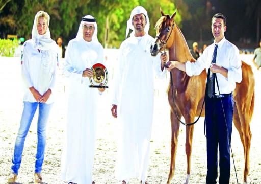 مربط دبي يخطف أضواء «الإمارات لمربي الخيول»