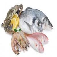 دراسة أمريكية: تناول المأكولات البحرية يسرع الإنجاب