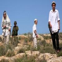 مستوطنون يحرقون 300 شجرة زيتون لمزارعين فلسطينيين