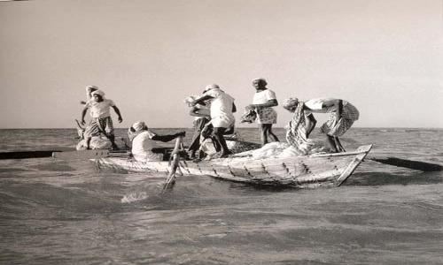 وزارة البيئة تعفي الصيادين من رسوم الخدمات