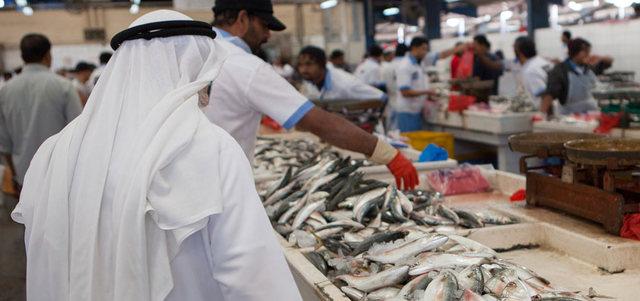 اعتماد تطوير مرافق وموانئ الصيادين في دبي