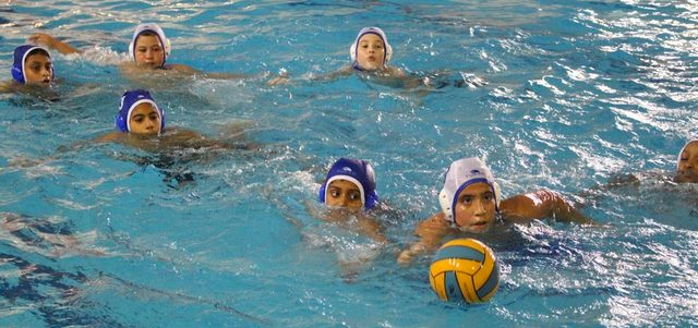 العين  يدرس تأسيس فريق للعبة كرة الماء