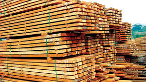 الإمارات الأولى عربيًا في استيراد الأخشاب الأمريكية
