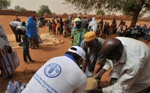 فاو: السودان يواجه تفاقماً في مستويات الجوع