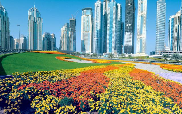 53 % من سكان الإمارات يستثمرون في القطاع العقاري