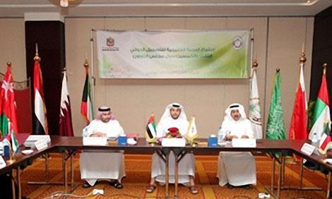 الإمارات تطالب بمضاعفة الجهود الخليجية لتوفير الدواء الآمن