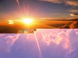 التعرض القليل للشمس يزيد احتمالية السرطان
