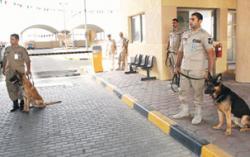 ارتفاع عدد السجناء في الكويت بنسبة 33 %