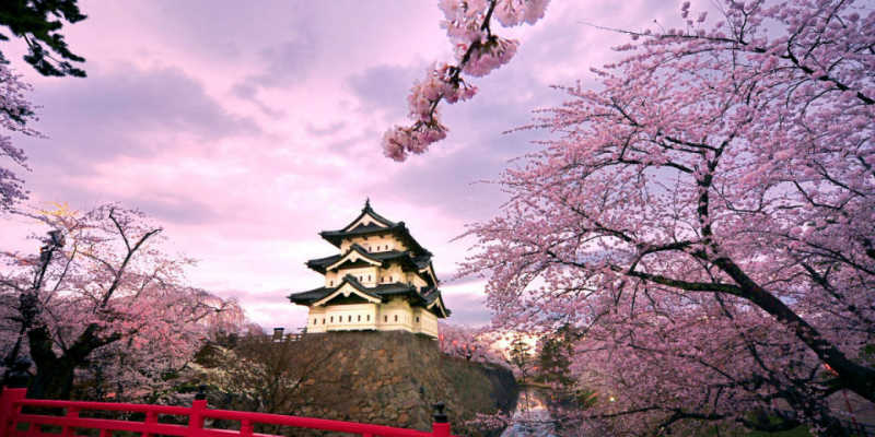 اليابان تعفي الإماراتيين من التأشيرة.. والتطبيق مطلع يوليو المقبل