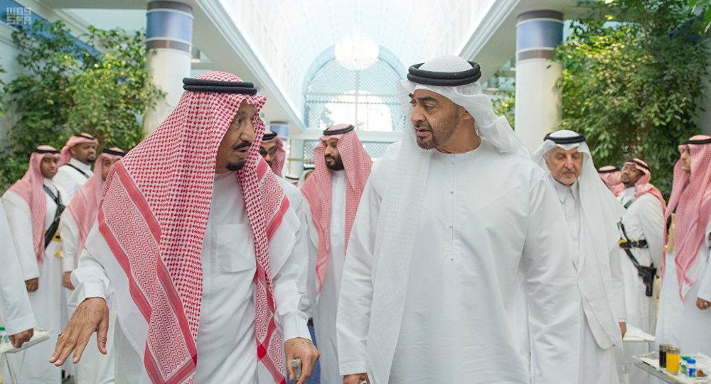 الإمارات تشكل لجنة تعاون مشتركة مع السعودية قد تكون بديلا عن