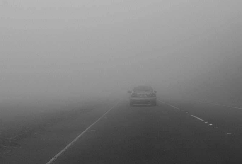 شرطة دبي: تسجيل 564 بلاغاً بحوادث مرورية خلال الضباب