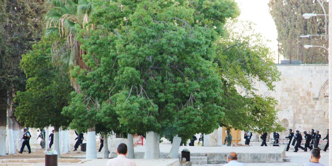 المستوطنون يشعلون حريقا في الحرم القدسي في ذكرى انتفاضة الأقصى