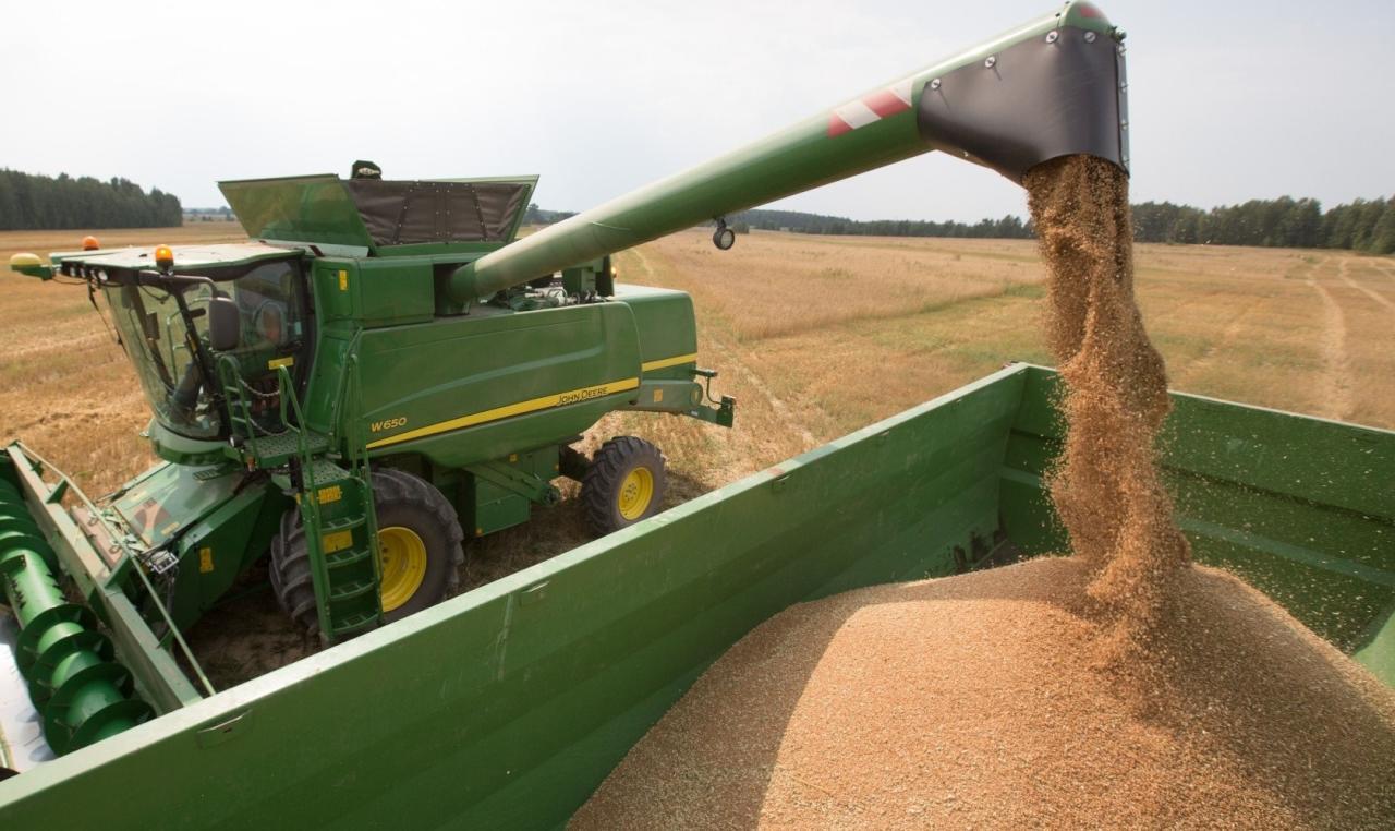 روسيا تسعى لزيادة صادرات الحبوب إلى الإمارات