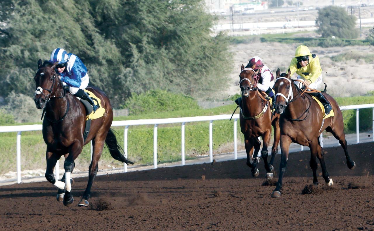 خيول إماراتية وأمريكية مرشحة للفوز بكأس دبي