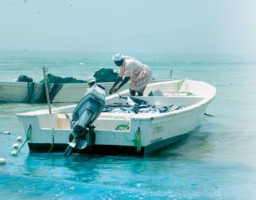 صيادون يشكون زوارق مجهولة تطاردهم في البحر