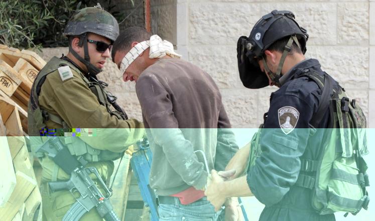 الإحتلال يعتقل 12 فلسطينياً بالضفة الغربية