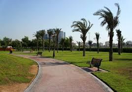 إغلاق حديقة الراشدية في عجمان 7 أيام