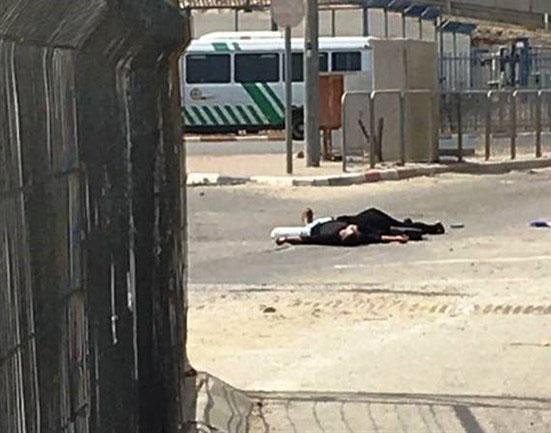 استشهاد فتاة وشاب فلسطينيين بنيران الاحتلال الإسرائيلي