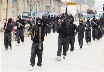 ما هي مكونات النظام السياسي لخلافة الدولة الإسلامية؟