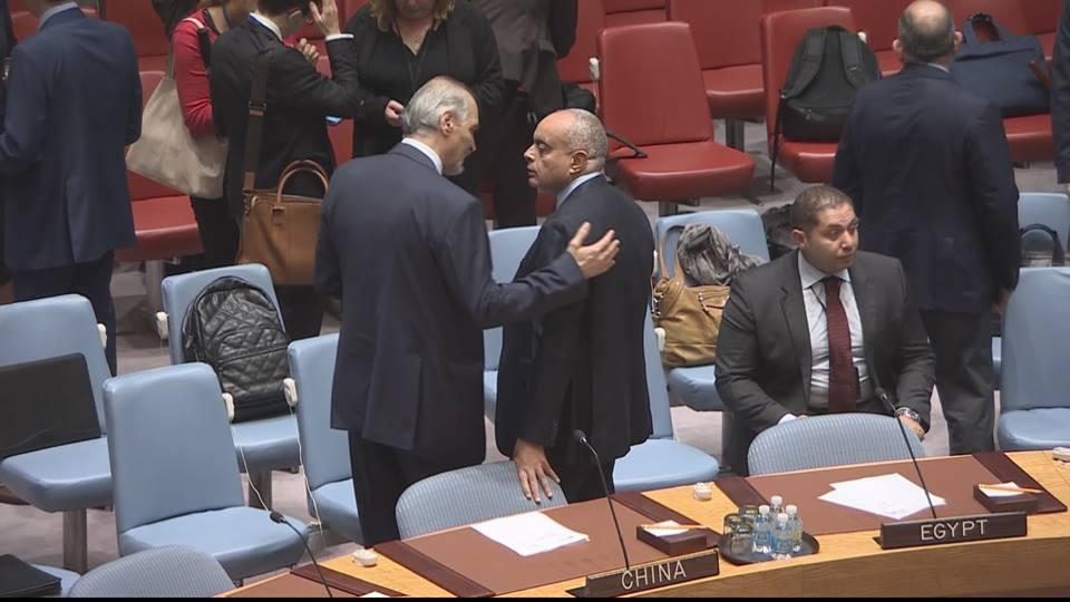 مصر تصوت لصالح قرار روسي فاشل في مجلس الأمن بشأن سوريا