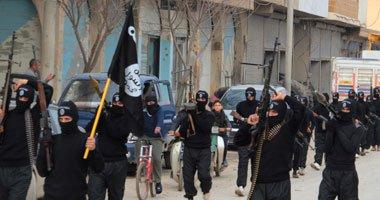 صحيفة أمريكية: تحالف بيت المقدس و داعش يعزز قوة الجماعتين